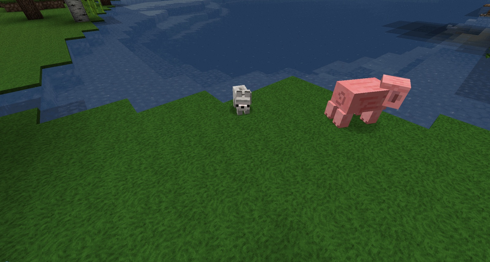 1477135458_210_Baby-Animals-Model-Swapper-Squickens-Mod-1.10.2 Baby Animals Model Swapper, Squickens Mod 1.10.2