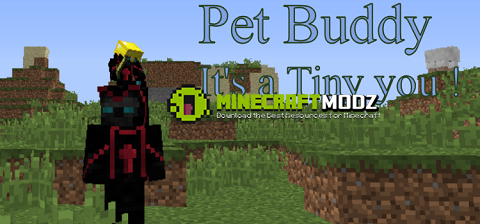 Pet-Buddy Pet Buddy Mod 1.11/1.10.2