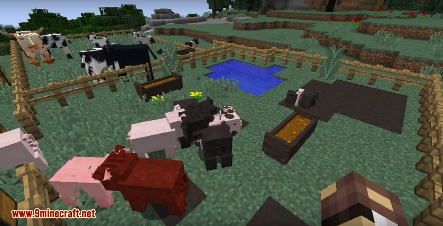 1487574390_944_animania-mod-1-10-2-new-chickens-cows-pigs-ferrets Animania Mod 1.10.2 (New Chickens, Cows, Pigs, Ferrets)