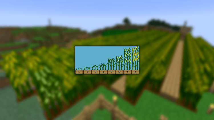 1490418667_147_simple-corn-mod-1-11-21-10-2-for-minecraft Simple Corn Mod 1.11.2/1.10.2 for Minecraft