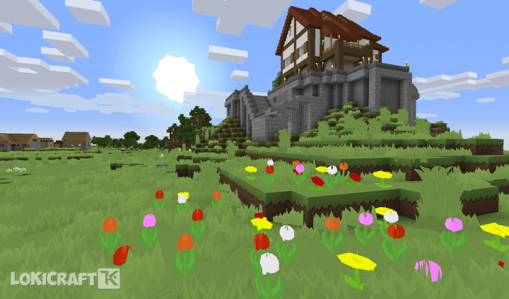LoKiCraft Pure Cartoon Resource Pack 2