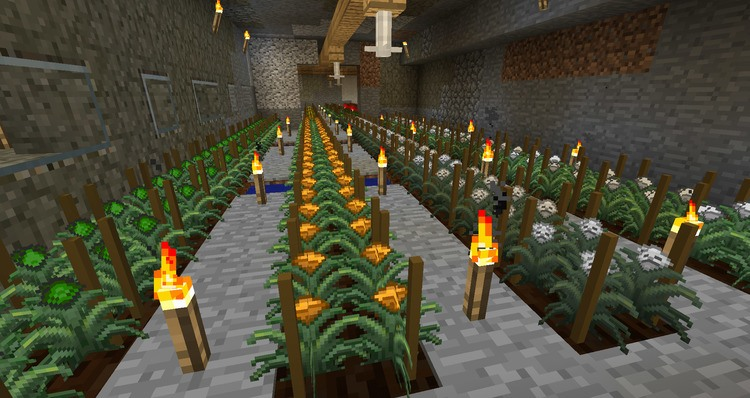 1492455373_821_magical-crops-core-for-minecraft-1-11-21-10-2 Magical Crops Core for Minecraft 1.11.2/1.10.2