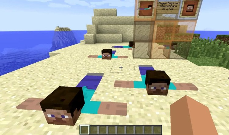 1492633794_513_player-rugs-mod-1-11-21-10-2-for-minecraft Player Rugs Mod 1.11.2/1.10.2 for Minecraft