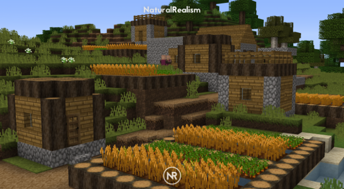 1493072517_106_naturalrealism-resource-pack-for-minecraft-1-11-2 NaturalRealism Resource Pack for Minecraft 1.11.2