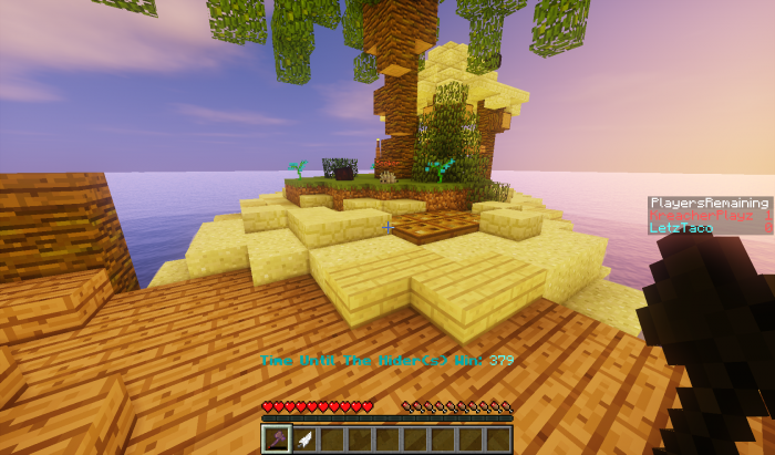 1493119751_918_hide-and-seek-map-for-minecraft-1-11-2 Hide and Seek Map for Minecraft 1.11.2