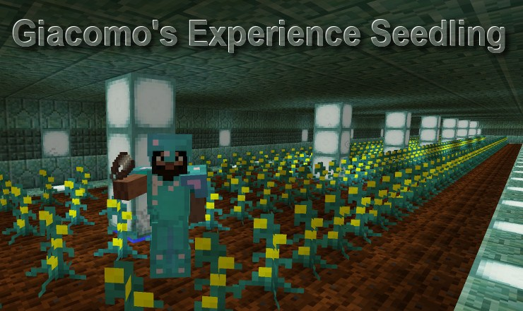 giacomos-experience-seedling-mod-1-11-21-10-2-for-minecraft Giacomo's Experience Seedling Mod 1.11.2/1.10.2 for Minecraft
