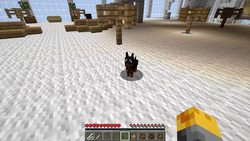 1496035268_599_doggy-style-mod-1-11-21-8-9-for-minecraft Doggy Style Mod 1.11.2/1.8.9 for Minecraft