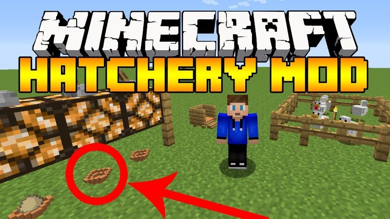 hatchery-mod-1-11-21-10-2-for-minecraft Hatchery Mod 1.11.2/1.10.2 for Minecraft