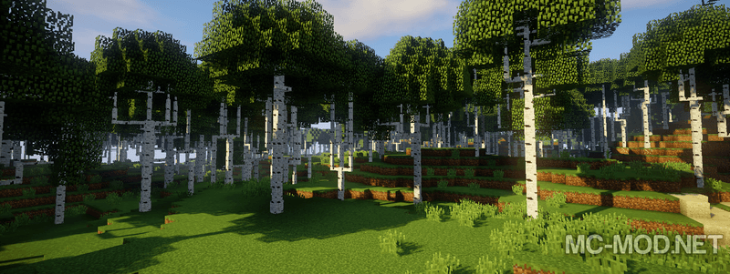 1505985841_493_dynamic-trees-mod-1-12-21-11-2-for-minecraft Dynamic Trees Mod 1.12.2/1.11.2 for Minecraft