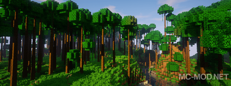1505985841_854_dynamic-trees-mod-1-12-21-11-2-for-minecraft Dynamic Trees Mod 1.12.2/1.11.2 for Minecraft