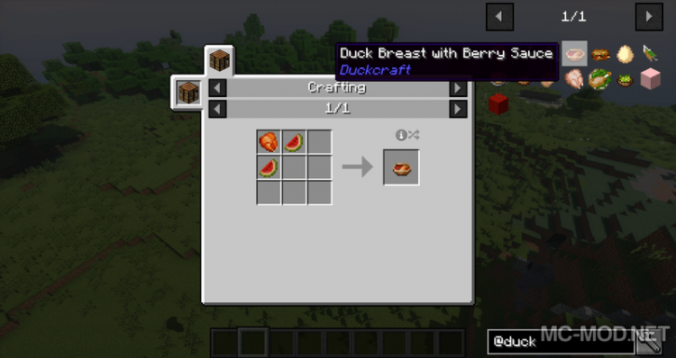 1515385600_17_duckcraft-mod-1-12-2-1-11-2-for-minecraft DuckCraft Mod 1.12.2/1.11.2 for Minecraft