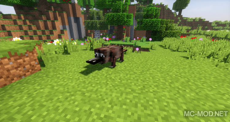 1515729973_791_extra-creatures-mod-1-12-2-1-11-2-for-minecraft Extra Creatures Mod 1.12.2/1.11.2 for Minecraft