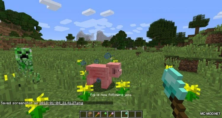 1527098674_314_mob-control-wands-mod-1-12-2-1-11-2-for-minecraft Mob Control Wands Mod 1.12.2/1.11.2 for minecraft