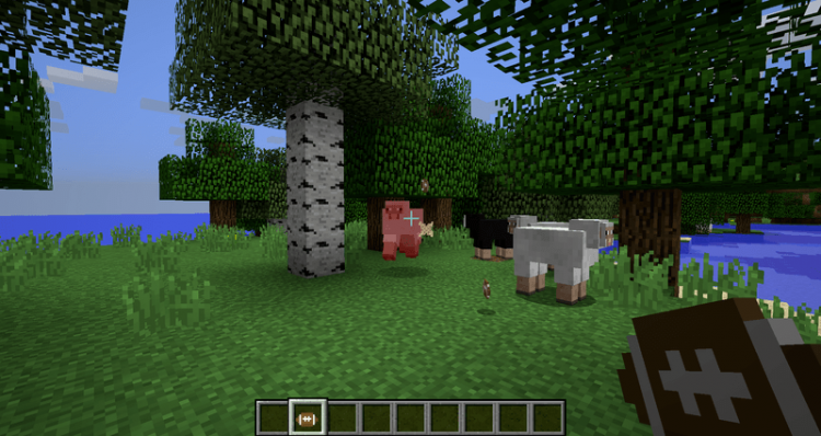 1527245171_50_pams-pig-skin-mod-1-12-2-1-11-2-for-minecraft Pam's Pig Skin Mod 1.12.2/1.11.2 for Minecraft